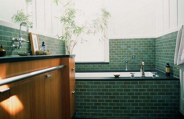 cây cảnh trong phòng tắm